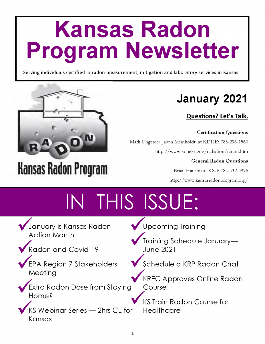 Front cover of January 2021 Newsletter